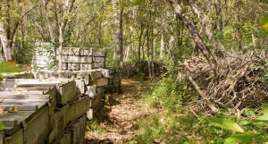 Paintball Fields MN woodsball